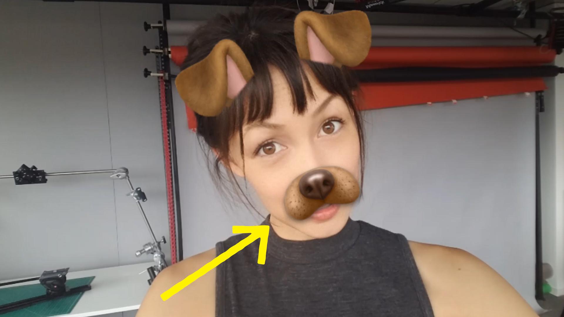 Dog Face Lens by Snap Inc.