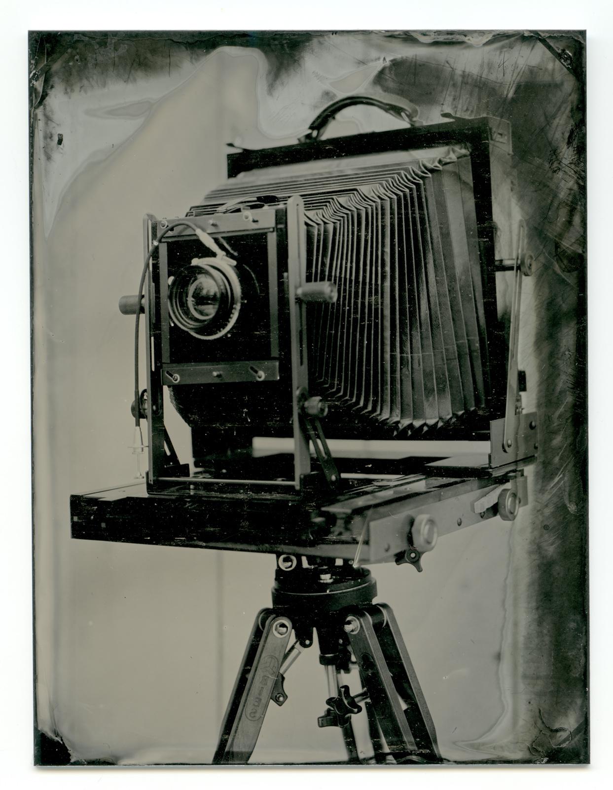 Tintype, 2013