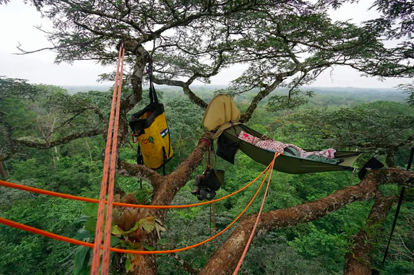 Sleeping in a tree in West Africa at 37m.