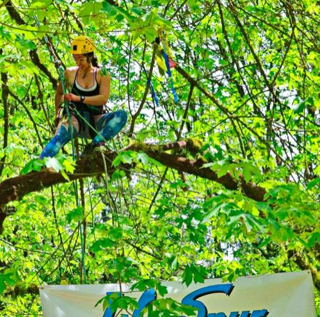 Tree climbing practice in Washington State, USA.
