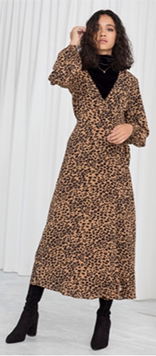 ppt+blog+leopard.jpg