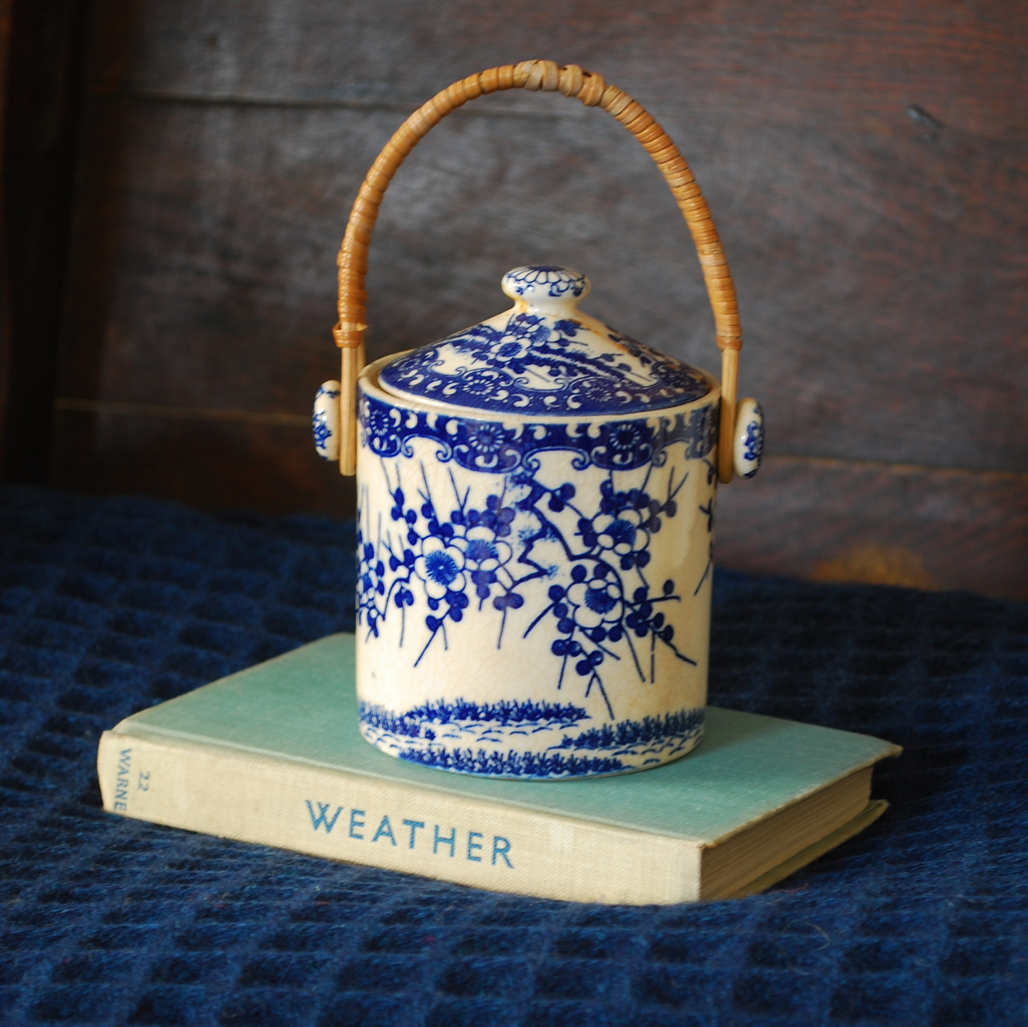 1-blue pot and weather book.JPG