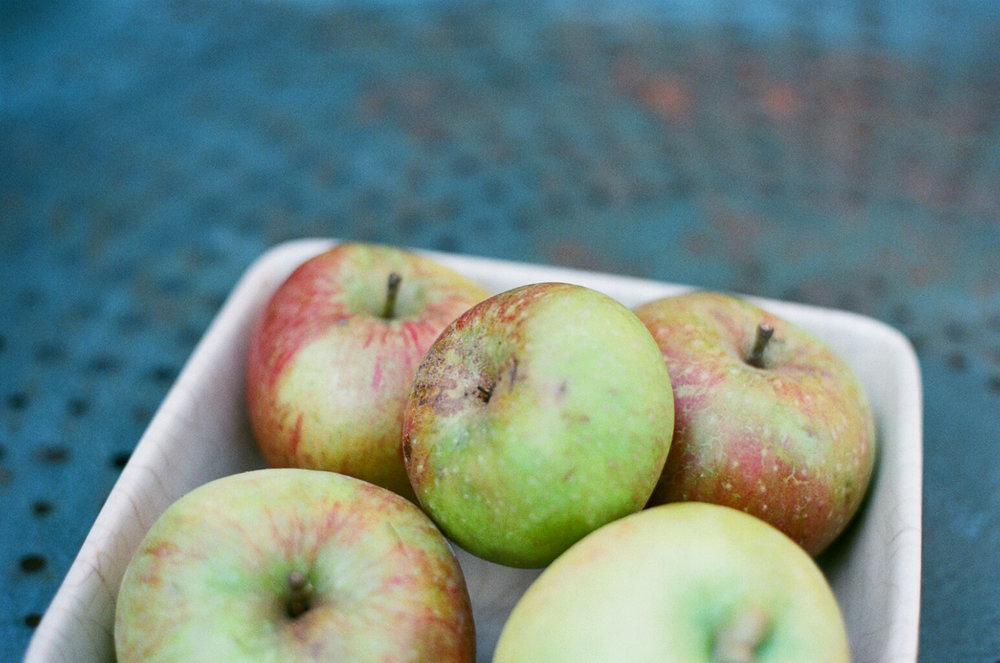 teaspoon of soil apples