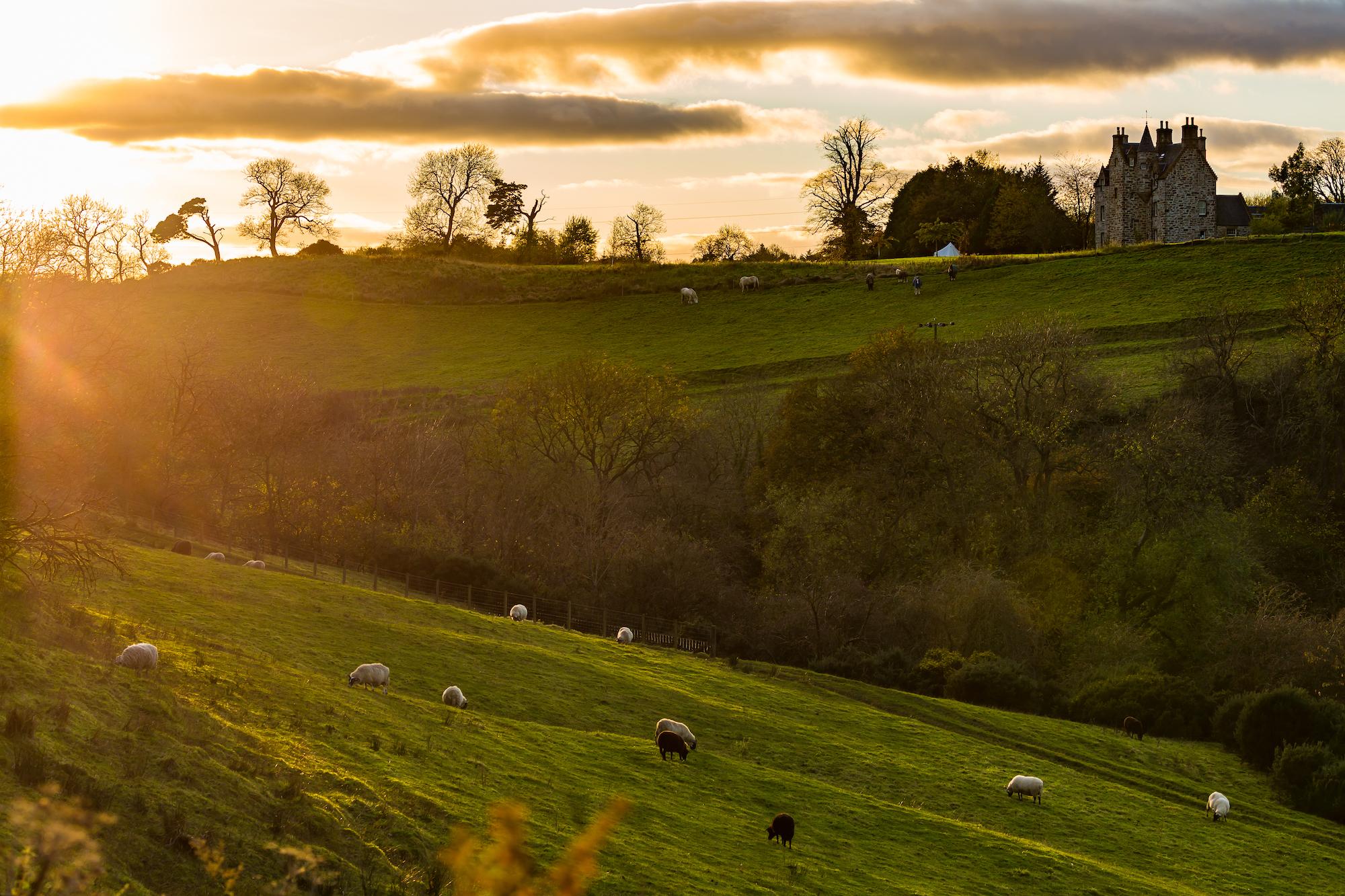 (823) Illieston Castle and Farm, Broxburn, West Lothian, Scotland.jpg