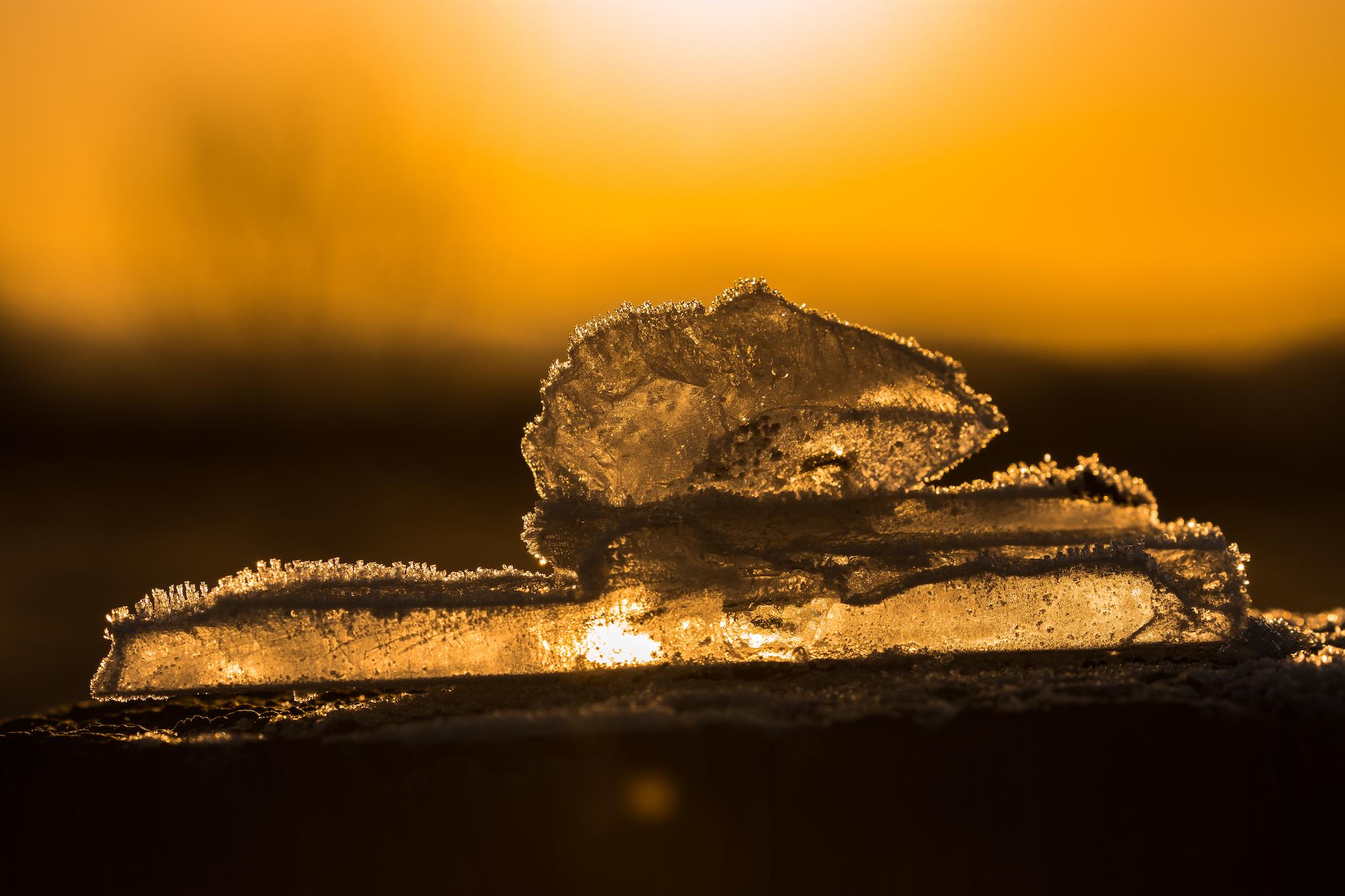 (888) Backlit Ice on Fence Post, Ratho, Edinburgh, Scotland.jpg