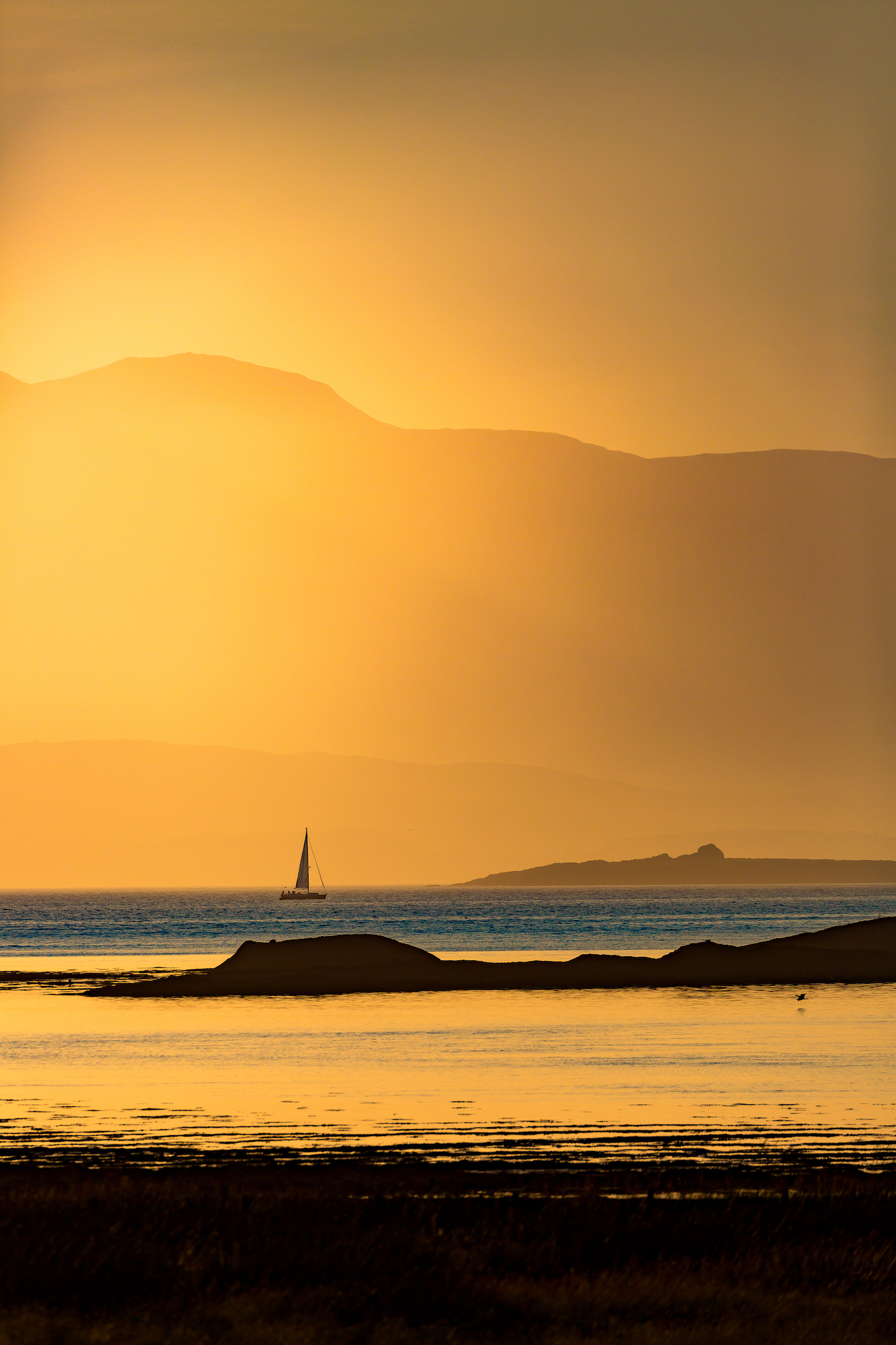 (668) Yachting at Sunset on the Firth of Lorn, Argyll and Bute, Scotland.jpg