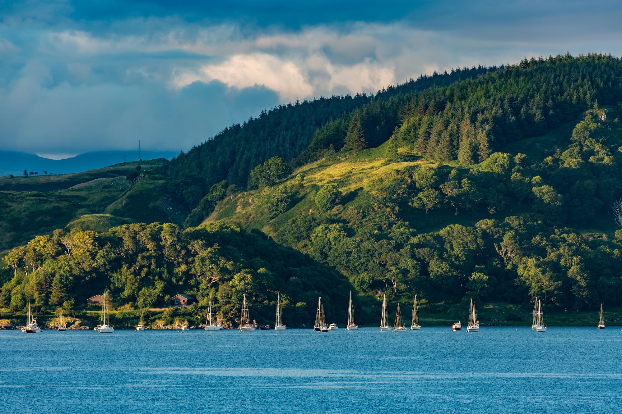 (559) Yachts on Loch Feochan, Ardentallen, Oban, Argyll and Bute, Scotland. Copyright David Wheater.jpg