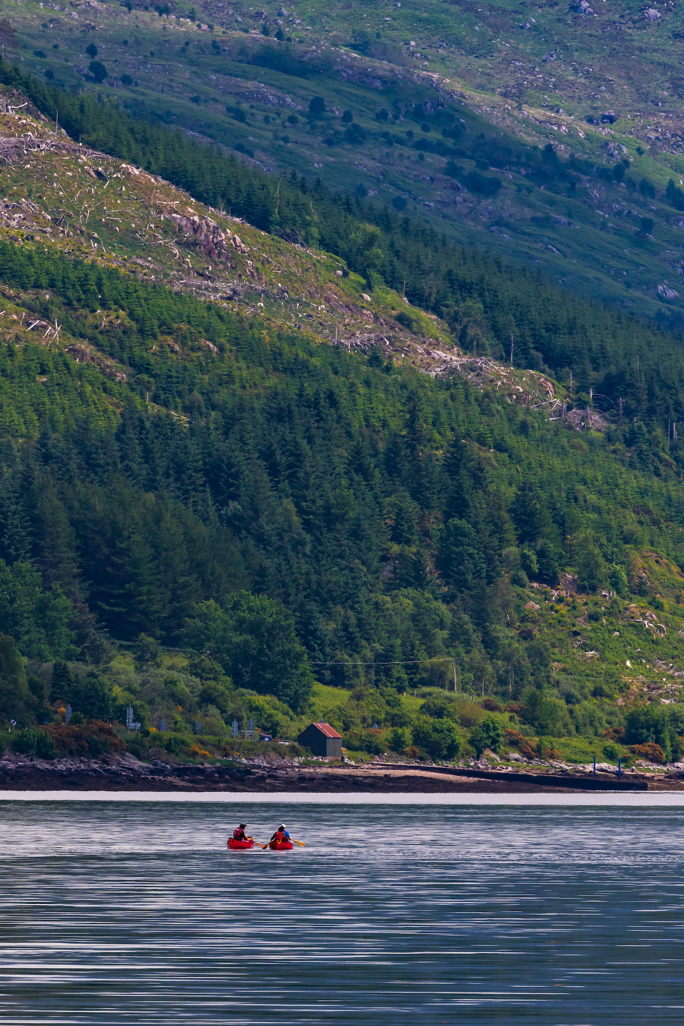 (1390) Two Red Canoes, Jetty on A861, Canoeing on Loch Sunart, Strontian, Ardnamurchan, Scottish Highlands, Scotland. Copyright David Wheater.jpg