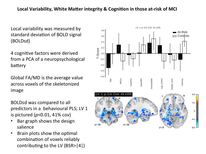 In a new project that I am doing across labs, I investigate local BOLD signal variability in older adults at-risk for developing mild cognitive impairment. We show BOLD variability, measured during resting state, is related to neuropsychological performance, though the direction of the effect is dependent on group and cognitive domain. Our next steps will explore how local variability supports functional connectivity, and again, how this relates to behaviour.