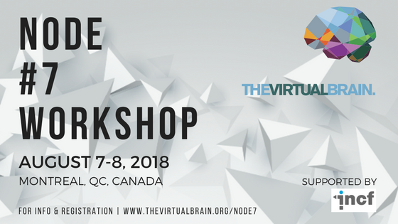 TVB Node #7 Workshop
