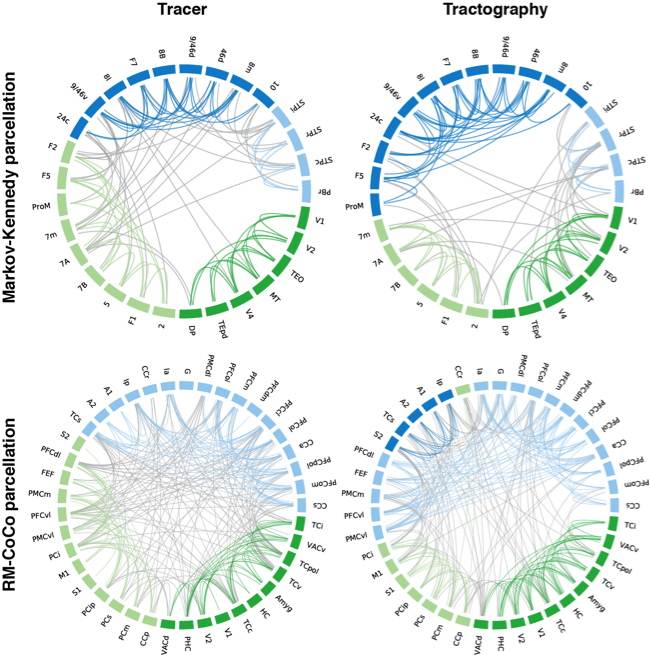 Not a bad correspondence between the partitioning of the tracer-based connectomes (left) and the DWI-based ones (right). Each module and their intra-modular connections are denoted by a different colour, with inter-modular connections in grey.