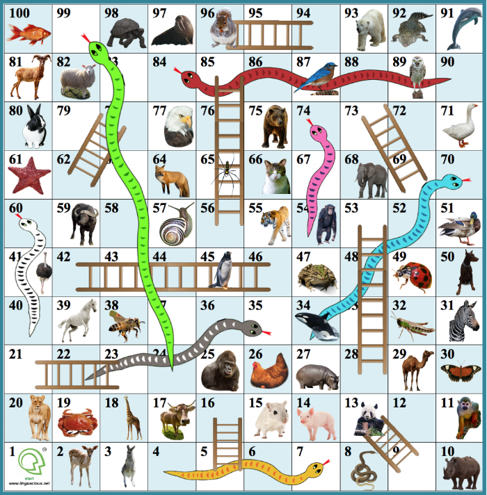 The Linguacious™ Snakes and Ladders (for use in conjunction with our  Animals  flashcards)