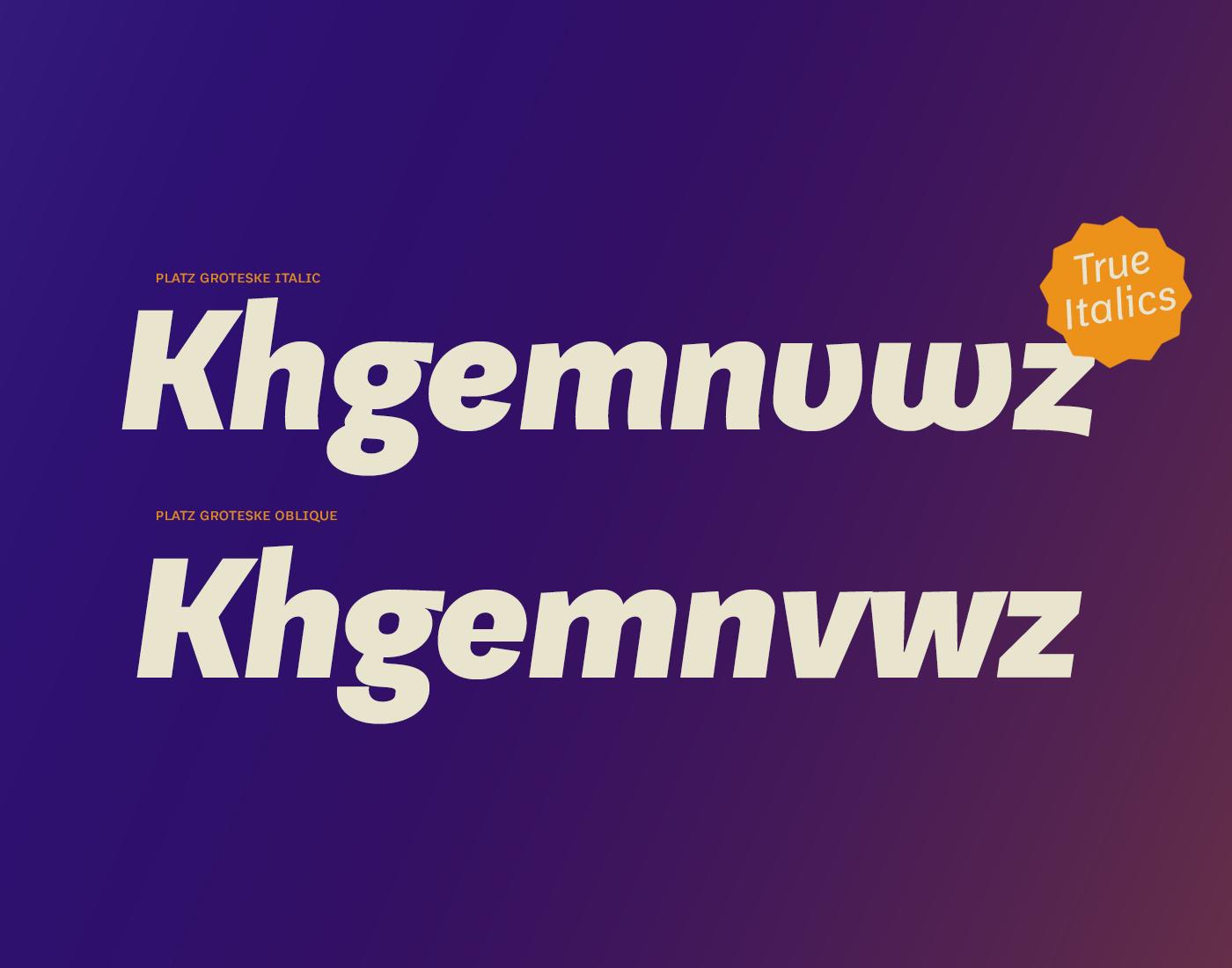 PlatzGrotesk_typography_11.png