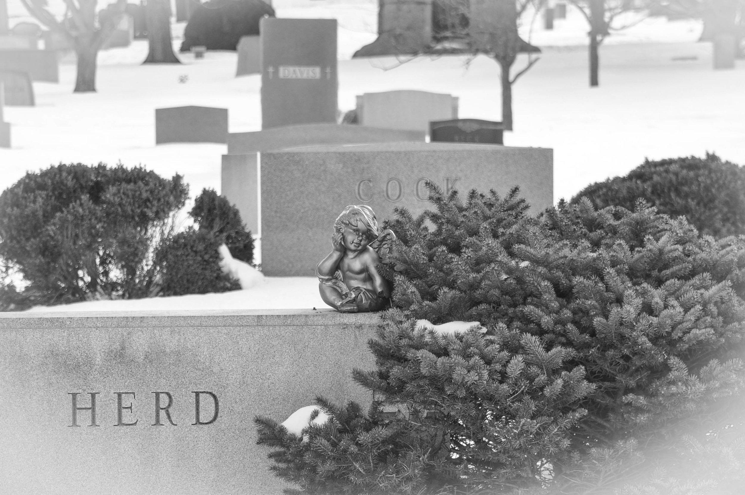 Druid Ridge #7.jpg
