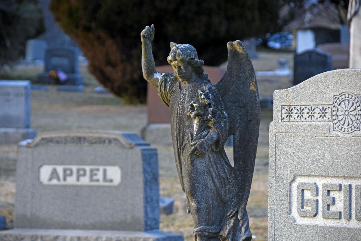 angel2.jpg