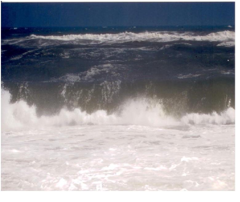 Qui ci sono gli spiriti nel mare che sono molti velenosi, sono invisibili ma si vedano solo nelle foto.