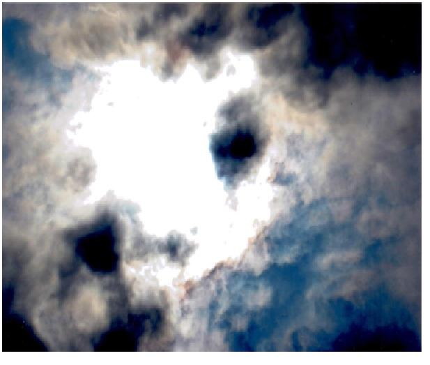 Una faccia di forma di un animale si forma tra le nuvole senza nessuno segno pericolante con una faccia pietosa vedete la prossima foto cosa vuole.