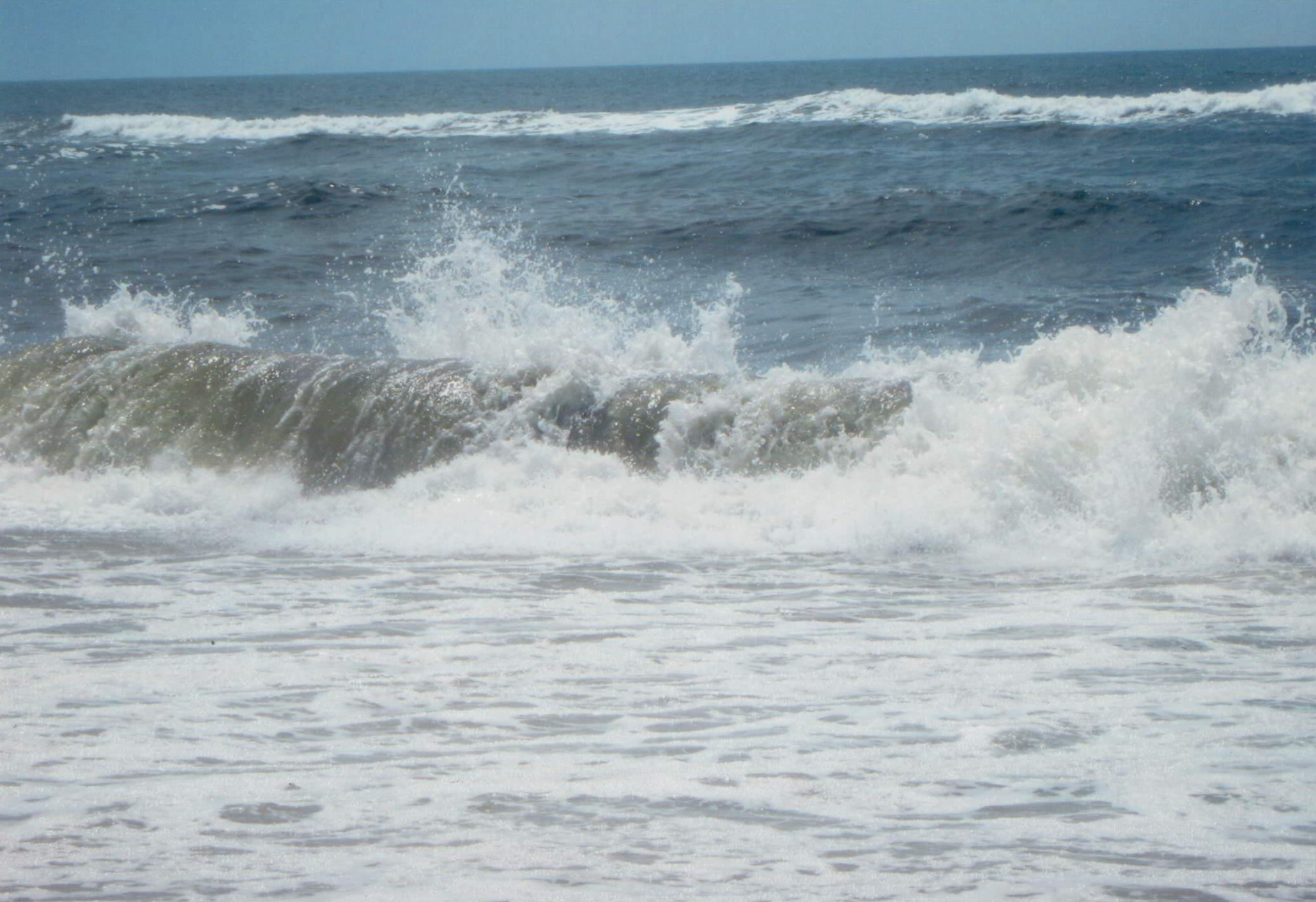 Nel mare, a volte quando portare fuori dall'acqua le conchiglie che sono belle specialmente i bambini le racolgono e sono felici di portarli a casa e conservali bene. DIO UNIVERSALE i da il messaggio di farvi capire che vi avete portato a casa cancro crostale dalle conchiglie. Se avete conchiglie nella casa buttatele. DIO UNIVERALE manda il miracolo della guarigione per l'eternità.