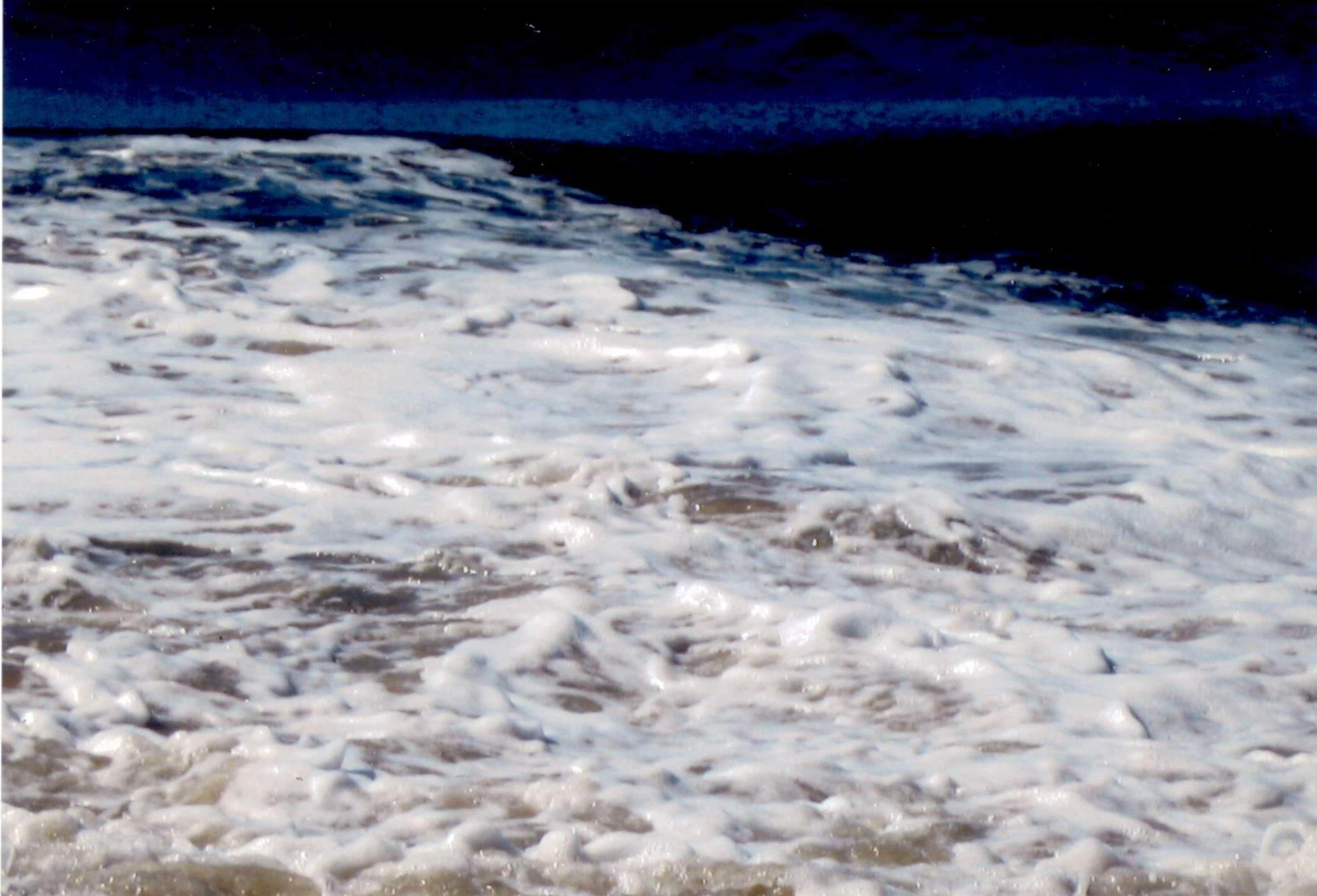 In questa foto ci sono spiriti di malura calura si chiamano cosi perché portano molti infezione muscolare. Avolte ci bisogna antibiotico per togliere l'infezione. Questo si prendeva nella sabbia e nel mare quando stava agitato.