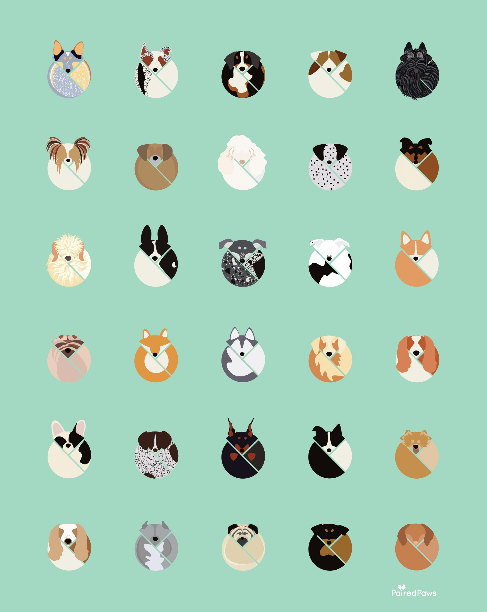 paired-paws-1.jpg