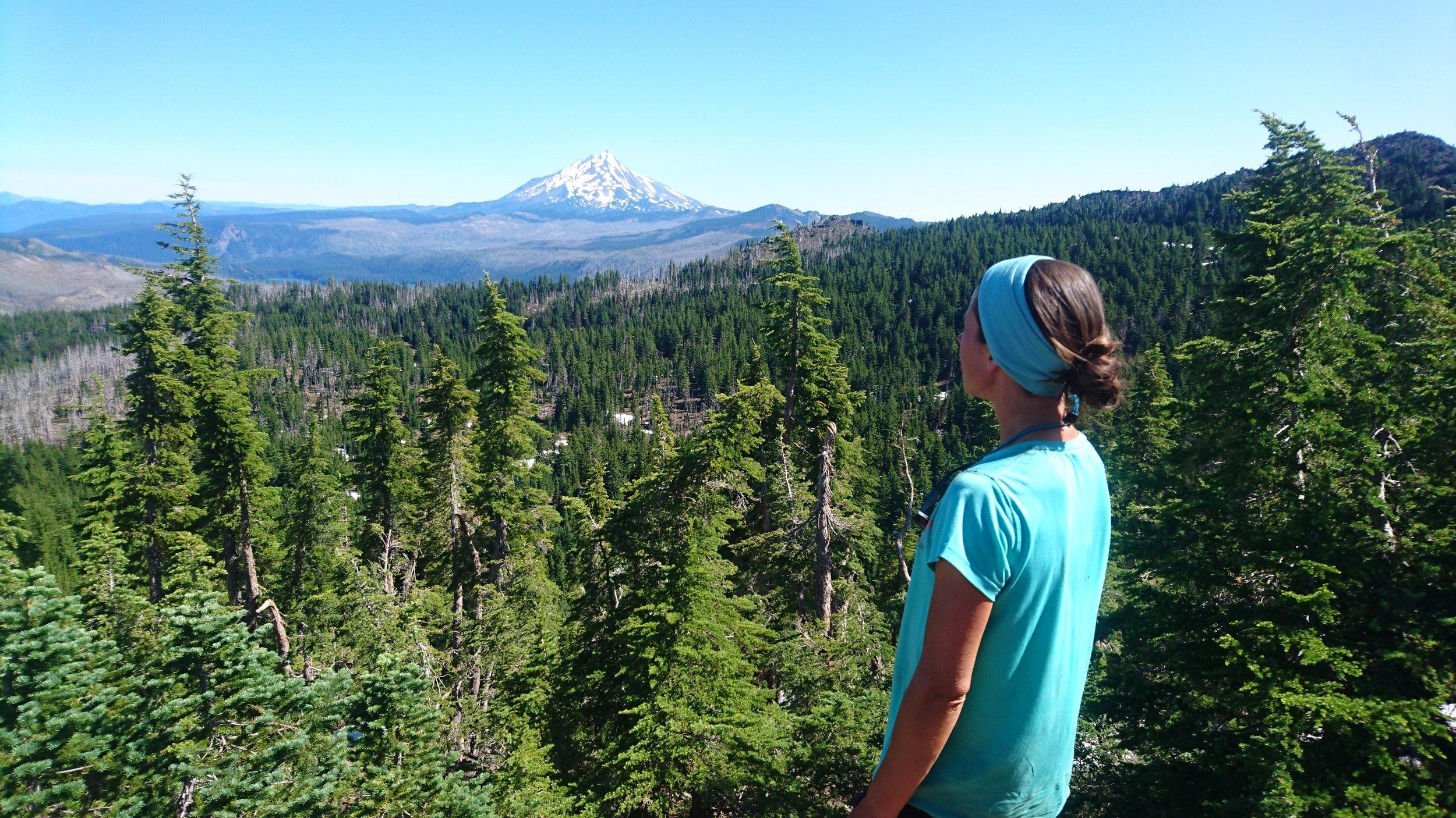 Mt. Jefferson far away