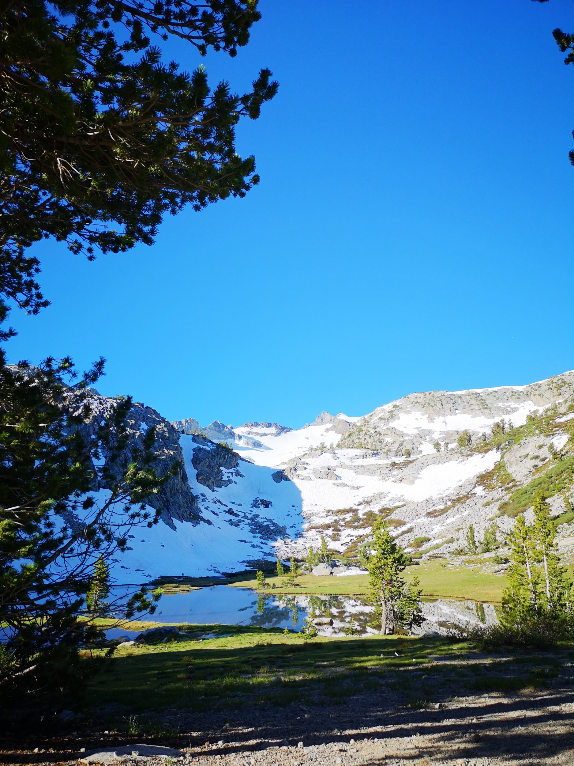 Our last campspot by Lyell creek just beneath Donahue pass.