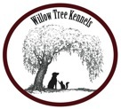 willow-tree-logo.jpg