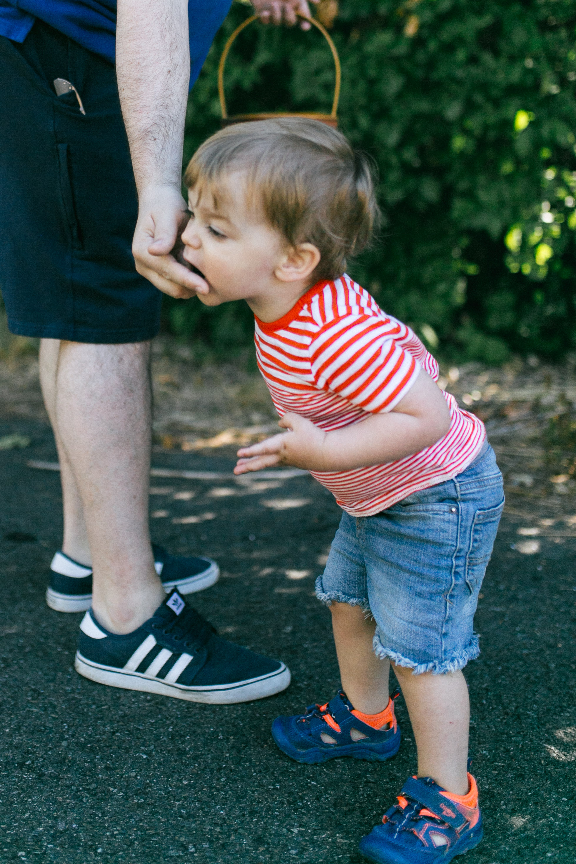 Family and kid portraits during the eclipse in Bellevue and Seattle WA-7.jpg