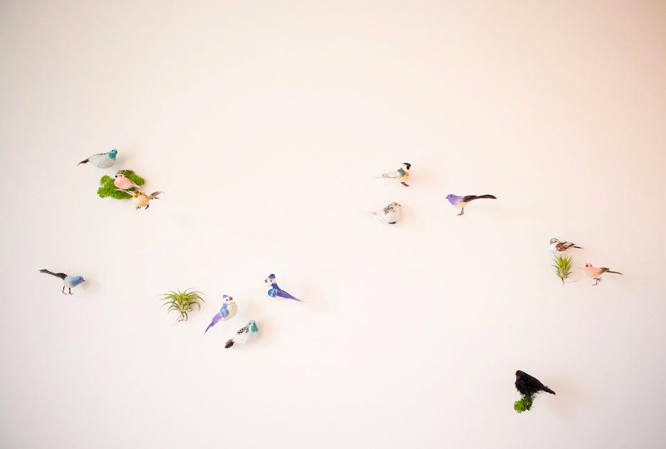 5BIRDS_060.jpg