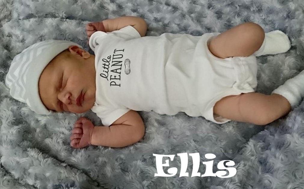 Ellis (2).jpg