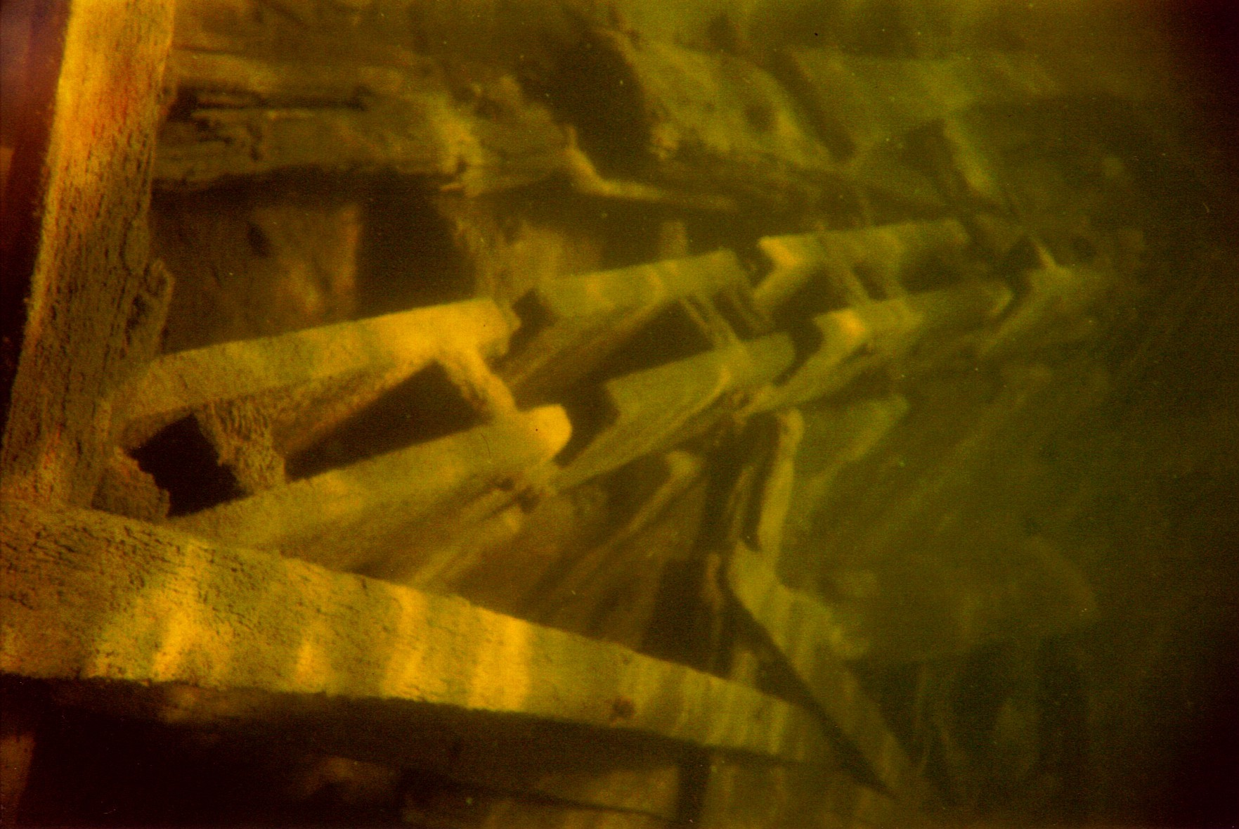 timbers1.JPG