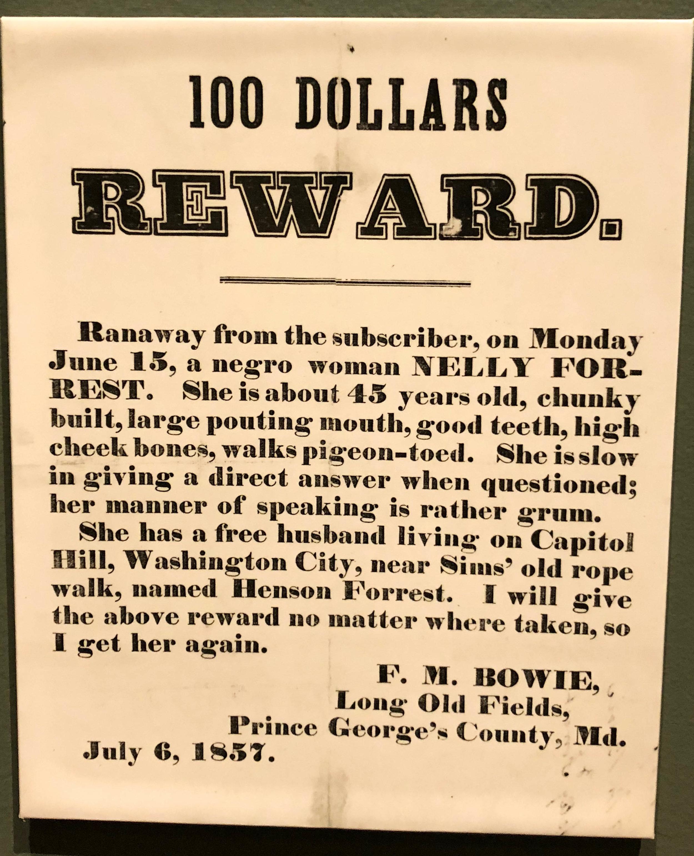 fields museum slavery.jpg