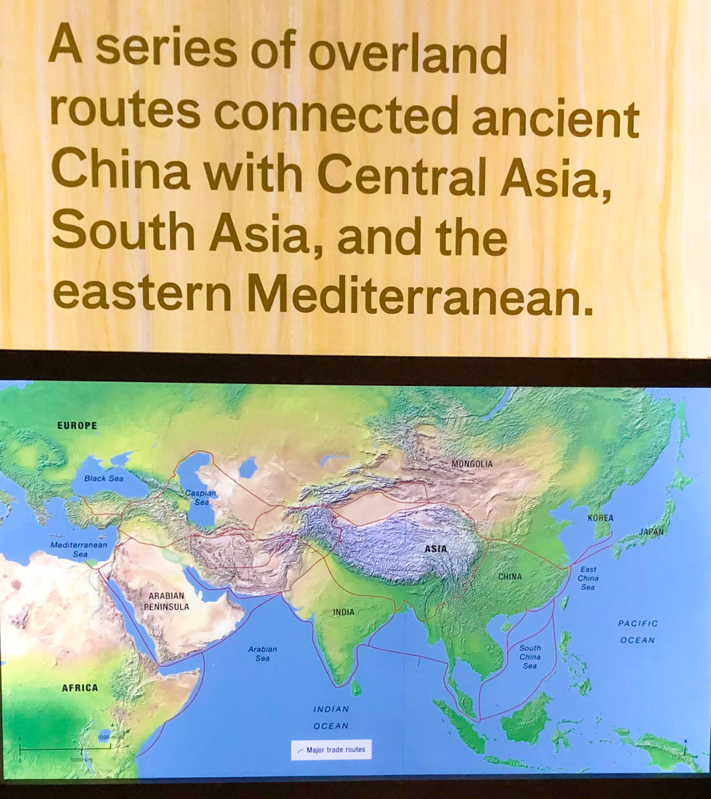fields museum asian route.jpg