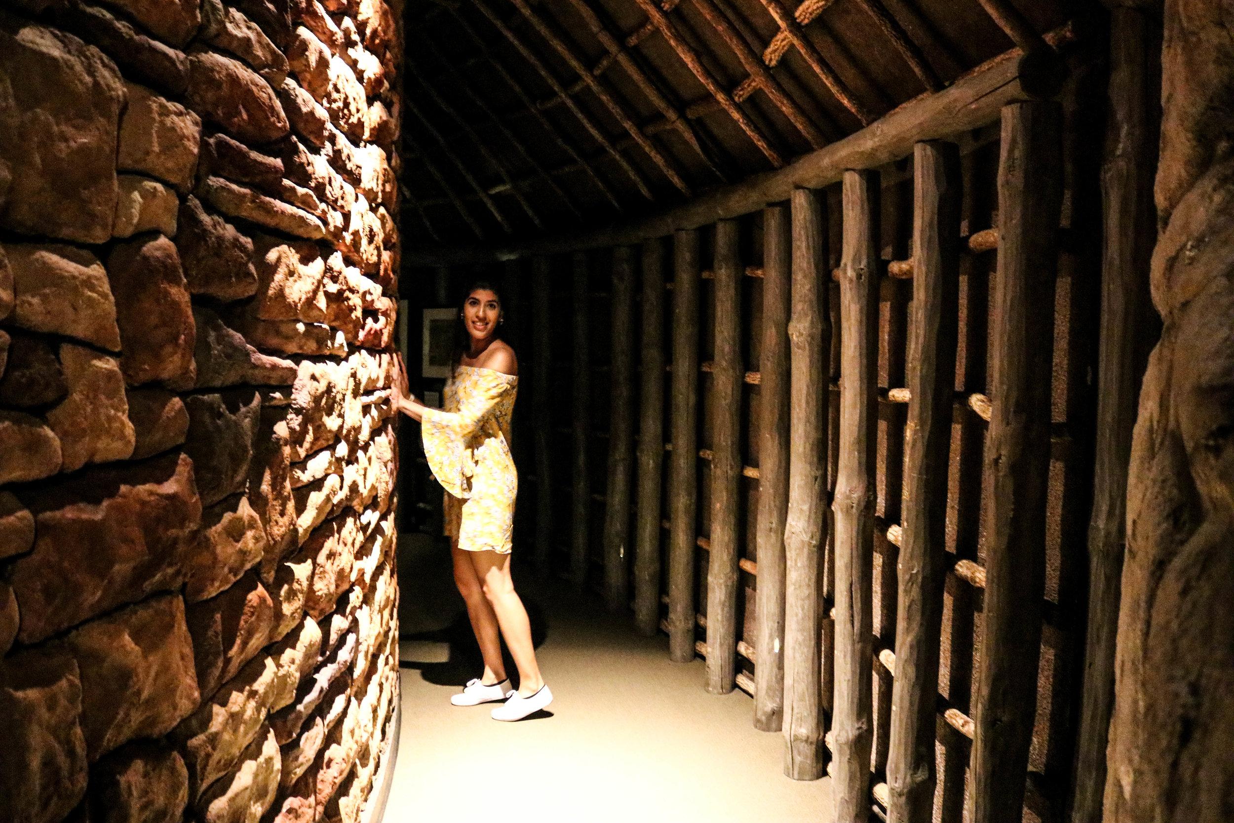 fields museum planeterium c.jpg