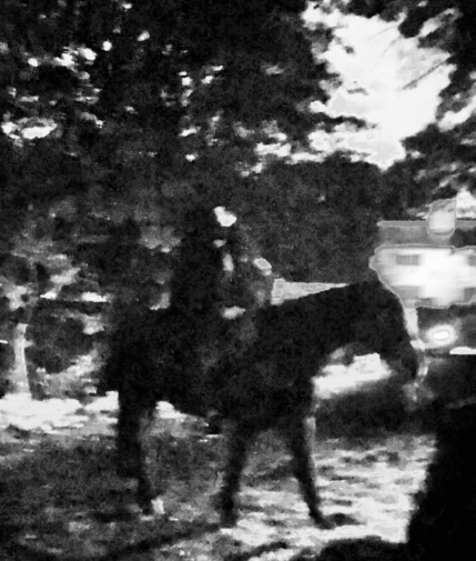 The best picture I could get of the Headless Horseman.
