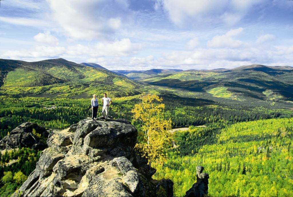 2Hikers above lush greenery.jpg