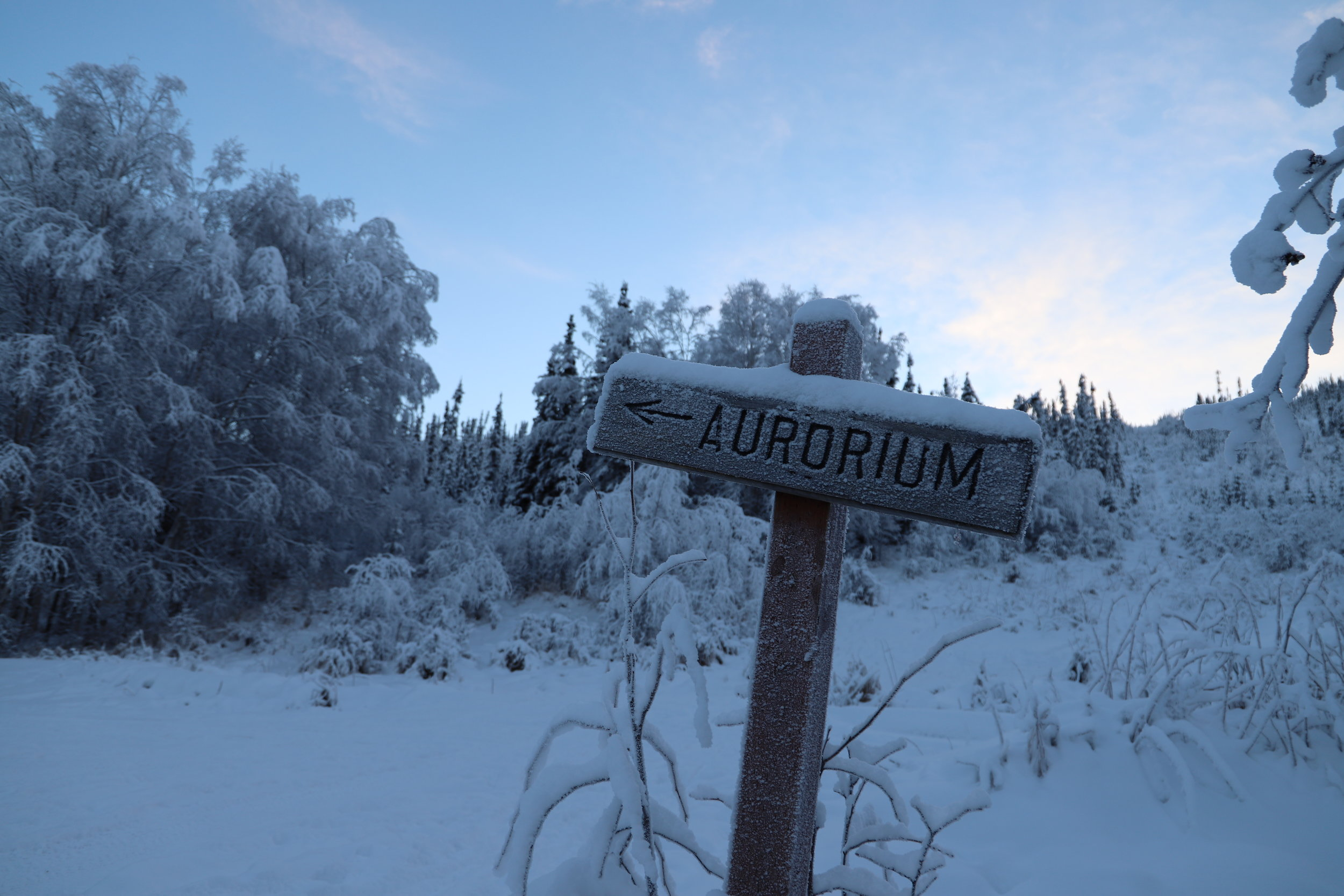 Aurorium.JPG