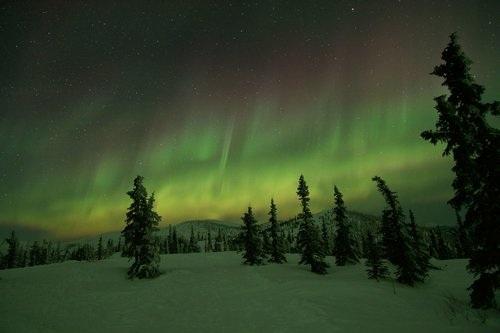 北极光一日游 - $200/人约12小时限8月21日 到 4月21日