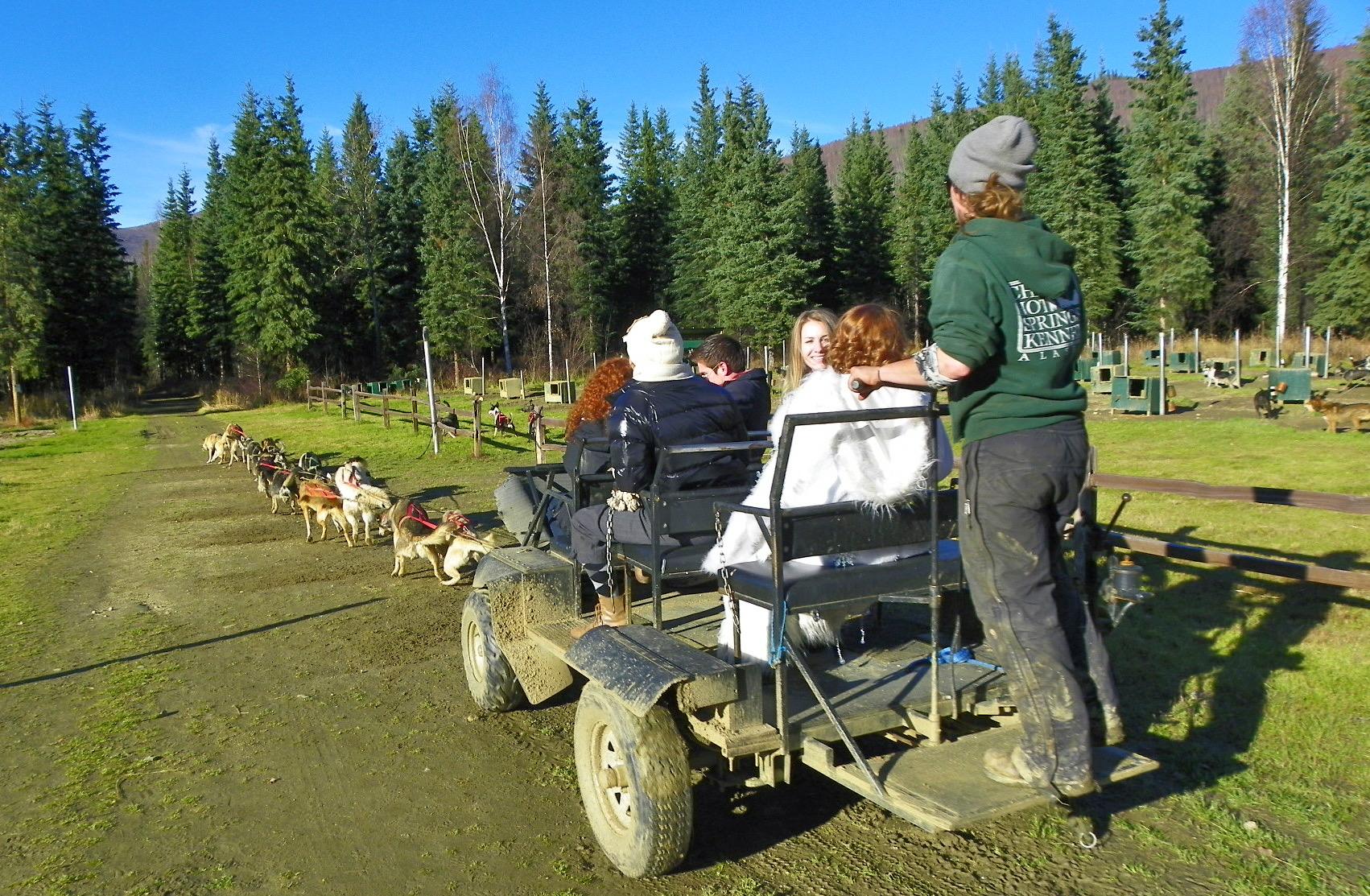 狗拉车 - 阿拉斯加特有的夏日活动!约15 分钟- $60 /每人最少2 人方可成行参观养狗场英文解说驯养雪橇狗之种种细节。约40 分钟 - $20每人