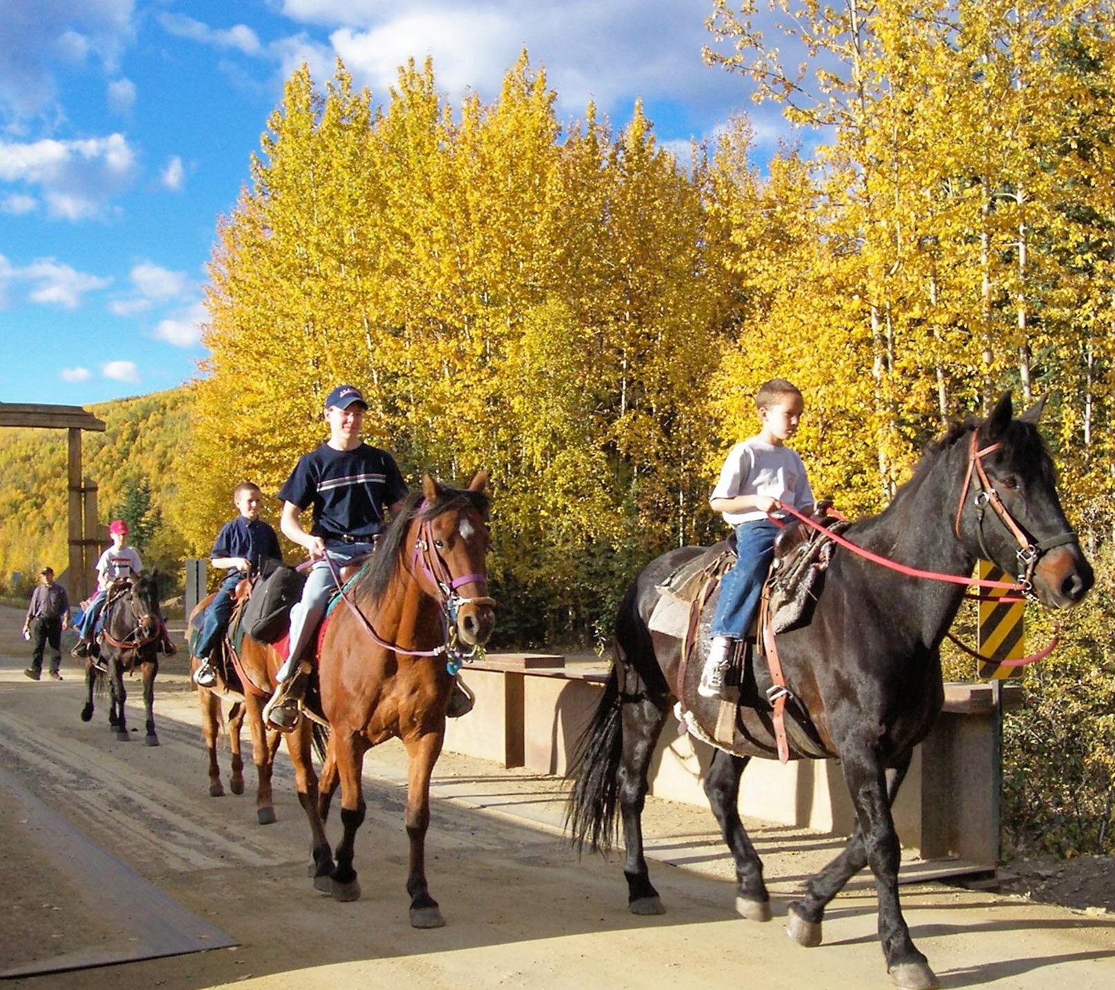 骑马 - 由贵宾骑术程度决定不同路线。30 分钟 - $50 /每人 || 1 小时 - $80 /每人儿童骑马由导游牵马而行。15 分钟 - $25 /每人