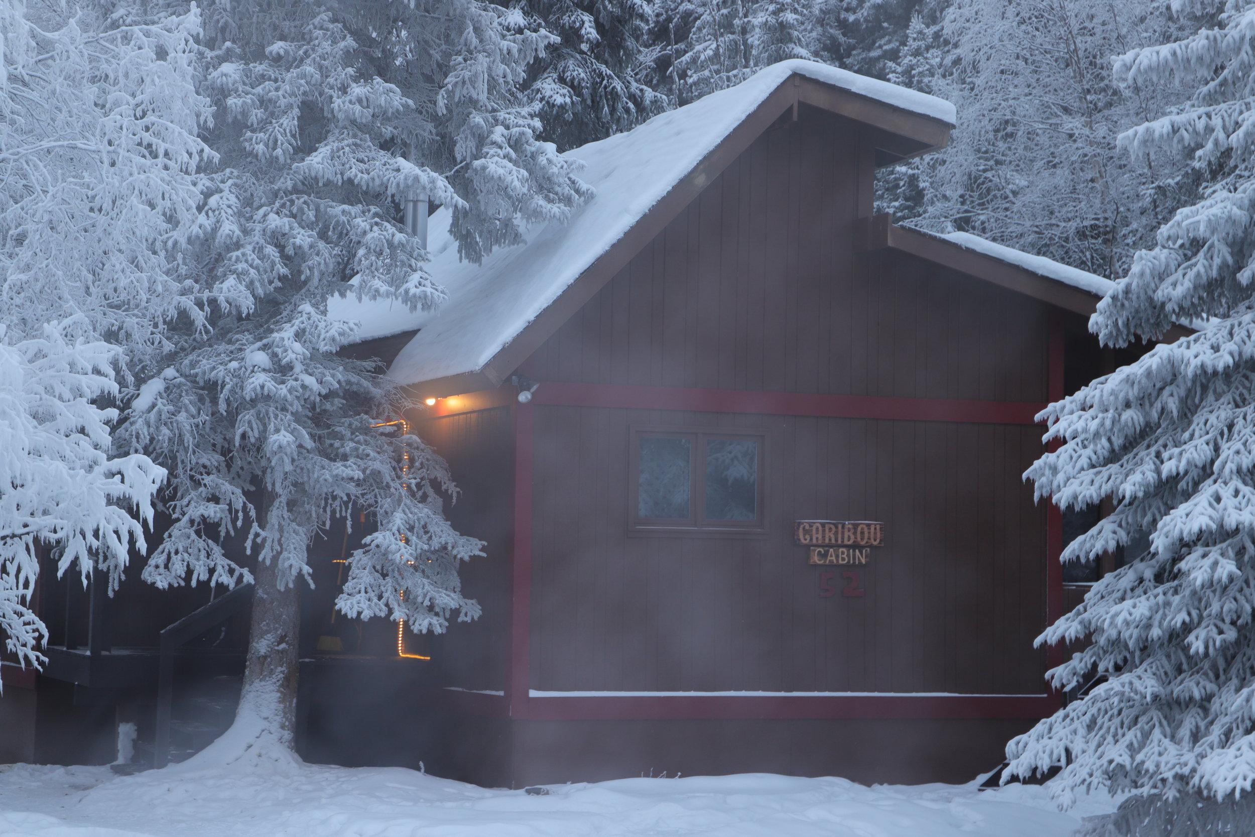 木屋 - 不能在网上预定小屋,请给前台打电话 (907) 451-8104 或发邮件与 gavin@chenahotsprings.com