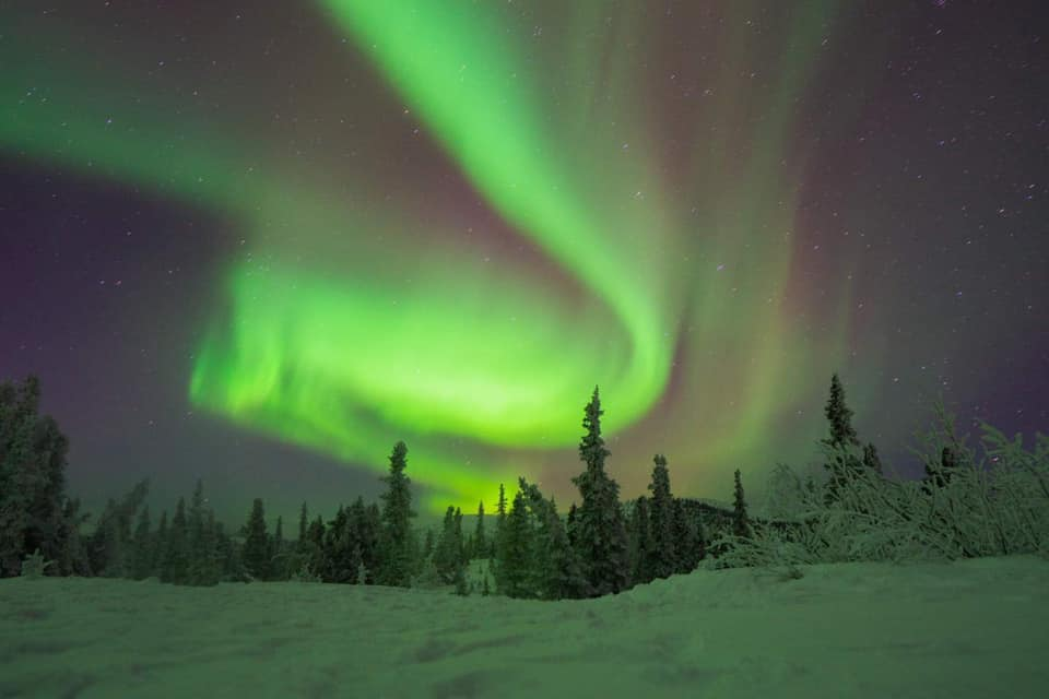 Auroras at the resort