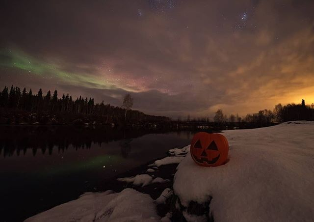 """Halloween is coming to town 👻⠀ ⠀ Reposting @cnlastro:⠀ ...⠀ """"Trick or treat 🎃👻⛄ first snowy picture of the year! It wasnt much of an aurora, but it was nice to finally have snow back on the ground! #Northernlights #auroraborealis #autumnvibes🍁 #halloween #fall #explorefairbanks #travelalaska #astrophotography #photography #pumpkin #chenalakes #chenahotsprings #chsrphoto #SonyA7s #sonyalpha #bealpha #sigmaphoto"""""""