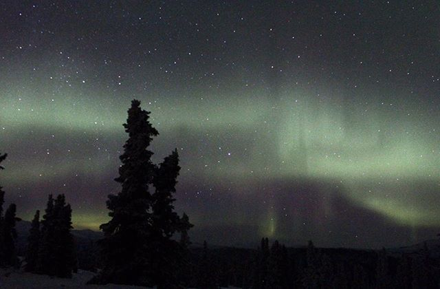 """If our guests say so 🤷🏼♀️⠀ ⠀ Take that trip to the top of the mountain 😉⠀ Reposting @jsf021:⠀ ...⠀ """"It's that time of year 💚💜✨ For some of the best northern lights views, take the SUSV to the top of Charlie Dome  #tbt #ChenaHotSprings #Alaska #clearskies #longexposure #northernlights #auroraborealis and #starrynights"""""""