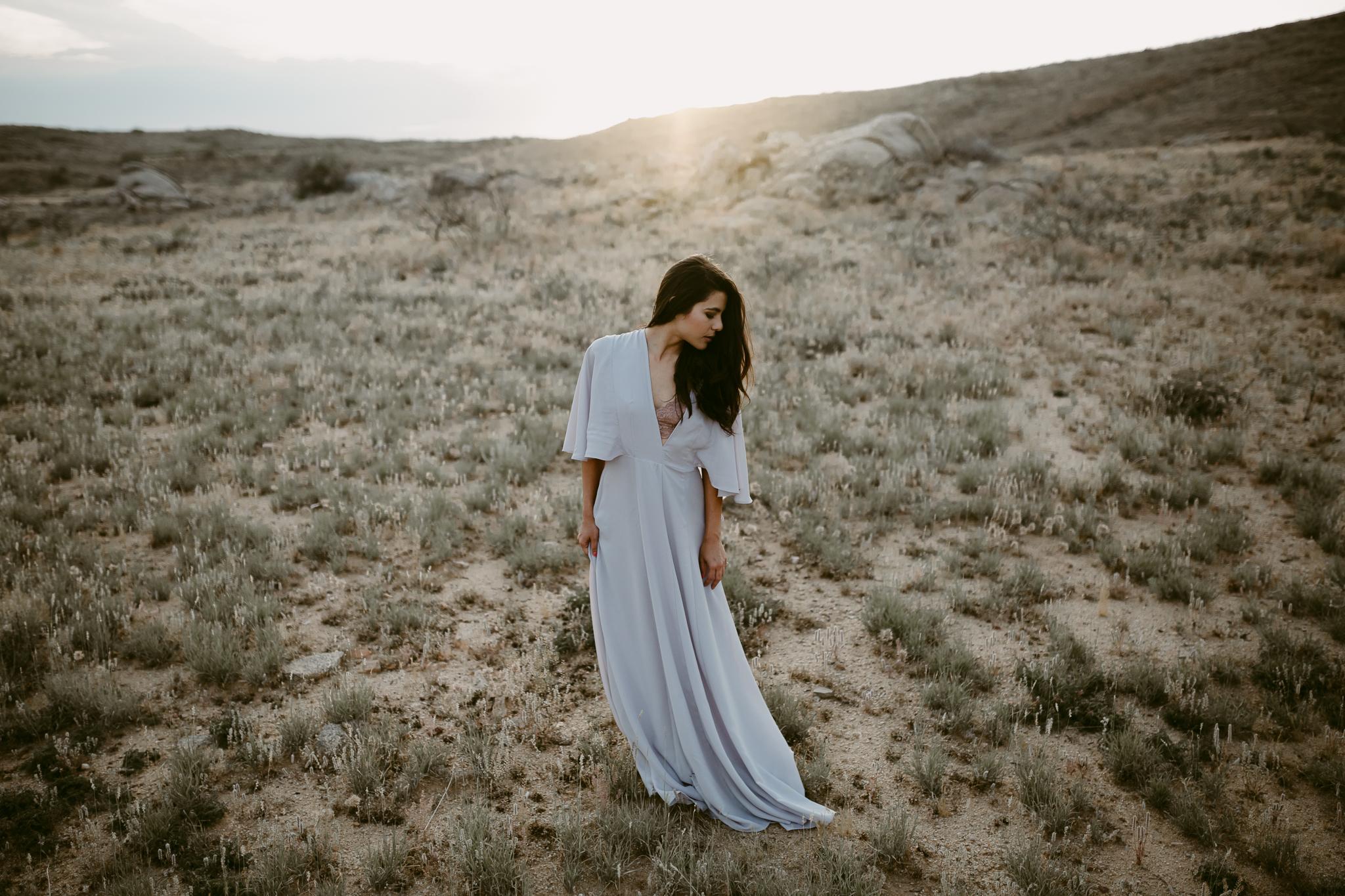 The Traveling Dress-14.jpg