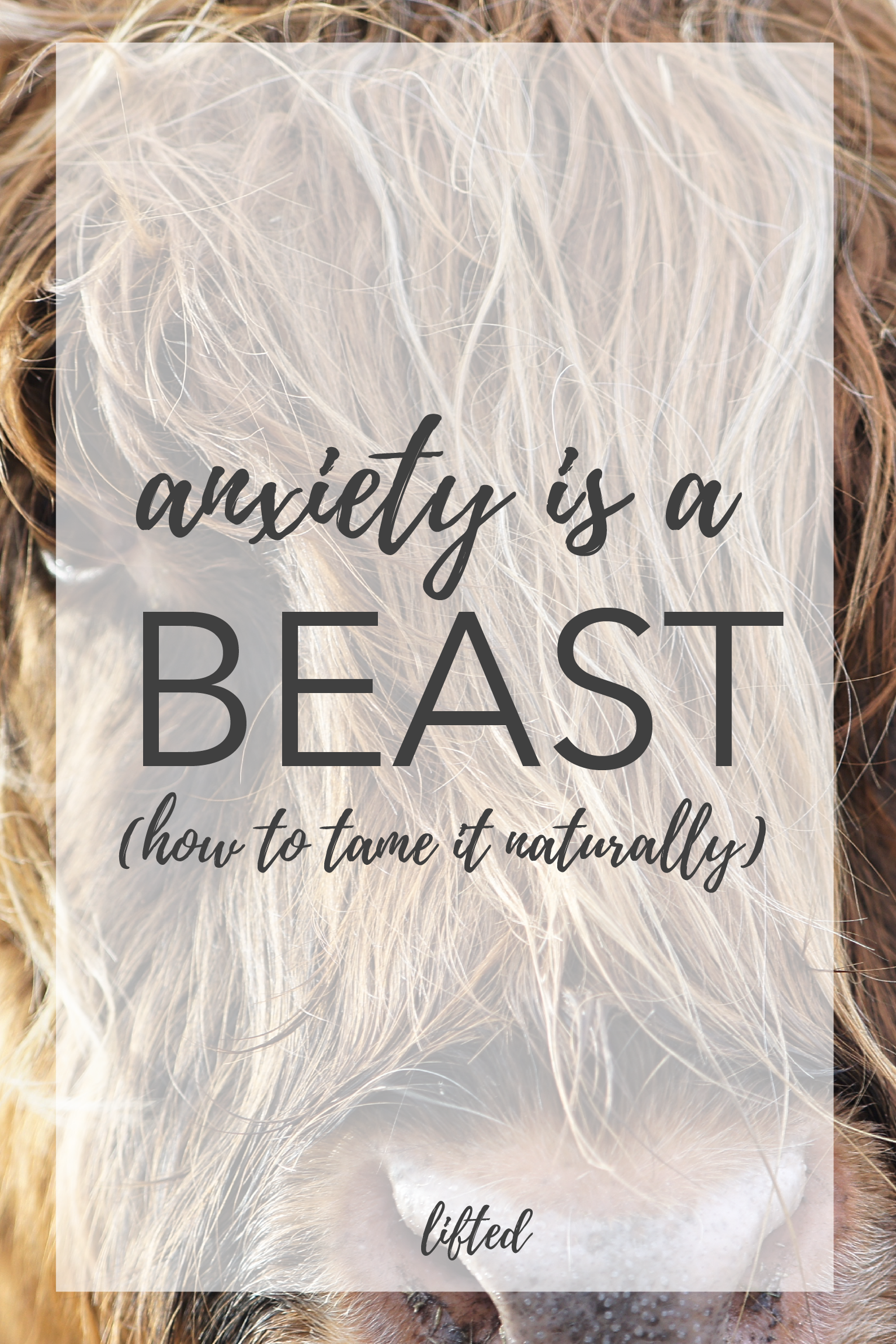 Anxiety is a Beast | How to Tame it Naturally | Lifted