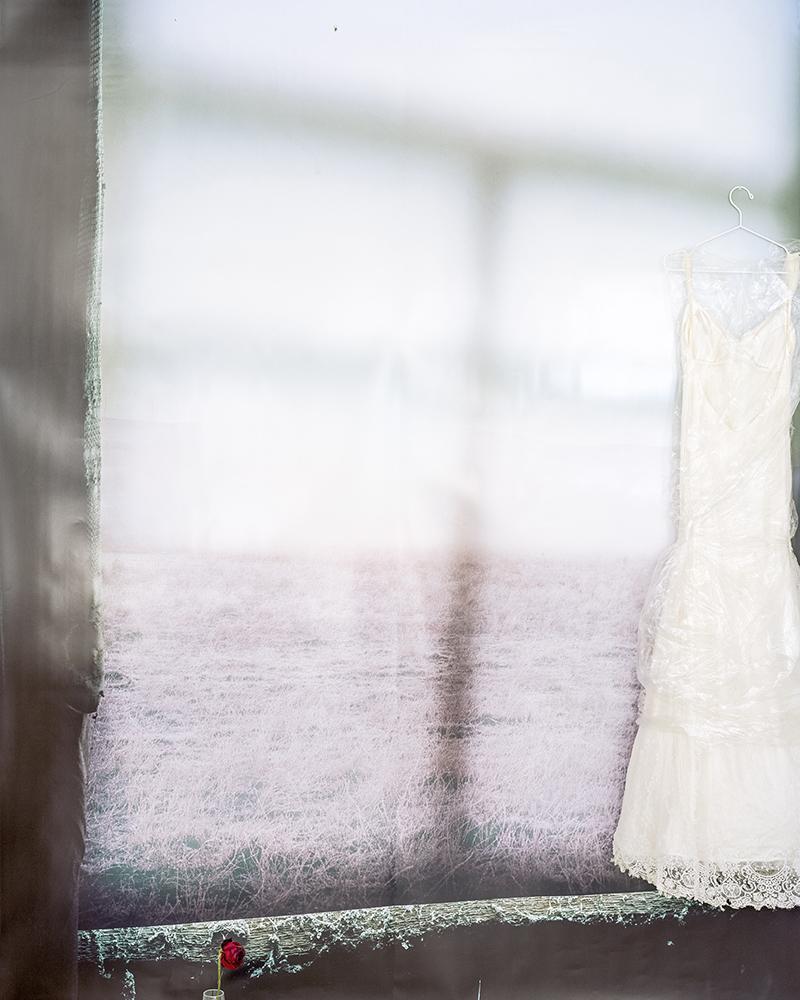 Svetlana Bailey,  wedding , 2016