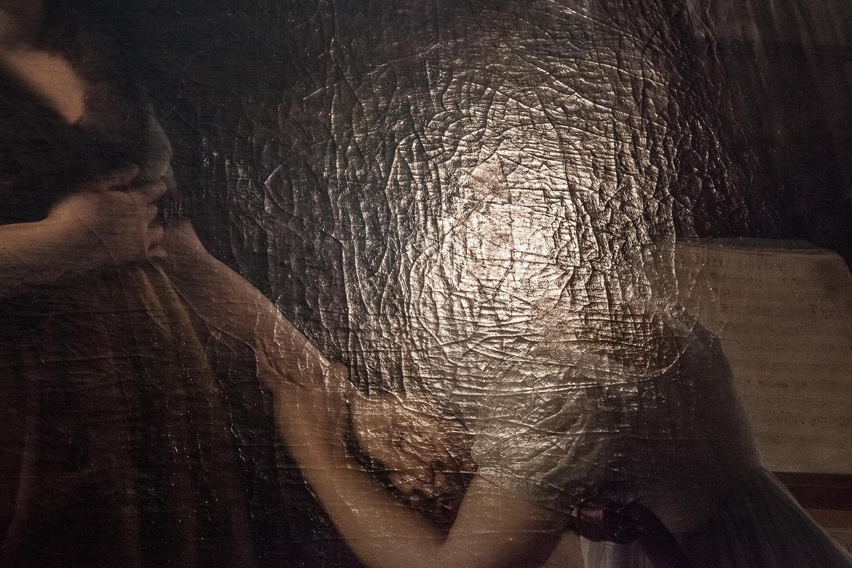 Bijan Yashar,  La Comtesse de Morel-Vinde and Her Daughter , 2015