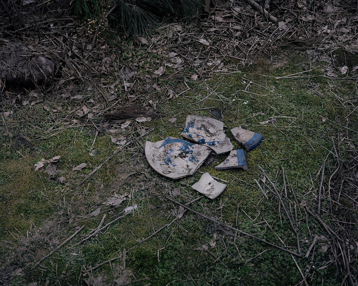 Seiya Bowen,  Broken Plate Near the Family House , 2016