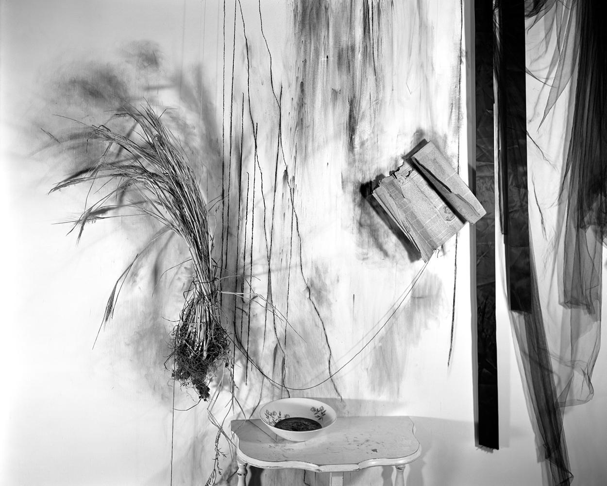 Lauren Semivan,  Ink,  2013. Archival pigment print.